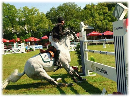 Horse Arthritis - Reluctance to Jump